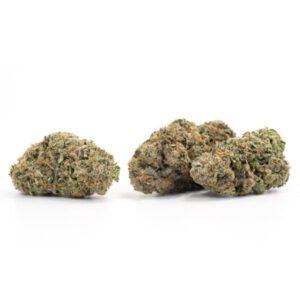 Buy Northern Lights Strain Online At Legal Weed Store Plug