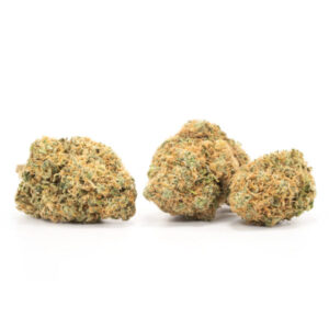 Buy UK Cheese Strain Online - Buy Weed Online - Legal Weed Store Plug