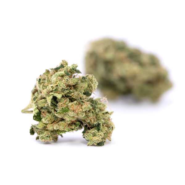 Buy 1oz Cotton Candy Kush Online - Legal Weed Store Plug