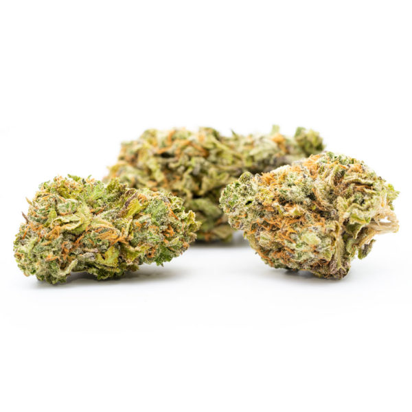Buy 1oz Jack Herer Strain Online - Legal Weed Store Plug