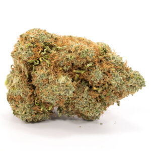 Buy Moby Dick Strain Online - Legal Weed Store Plug